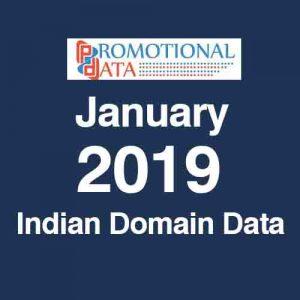 2019 Indian Domain Data